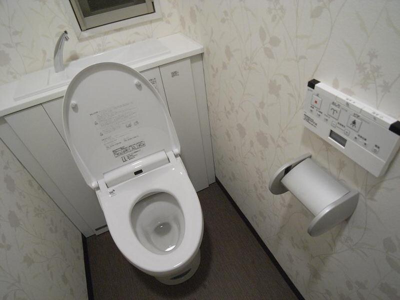 japanese-toilet-toto1_jpg_pagespeed_ce_2jv0oBIEMj